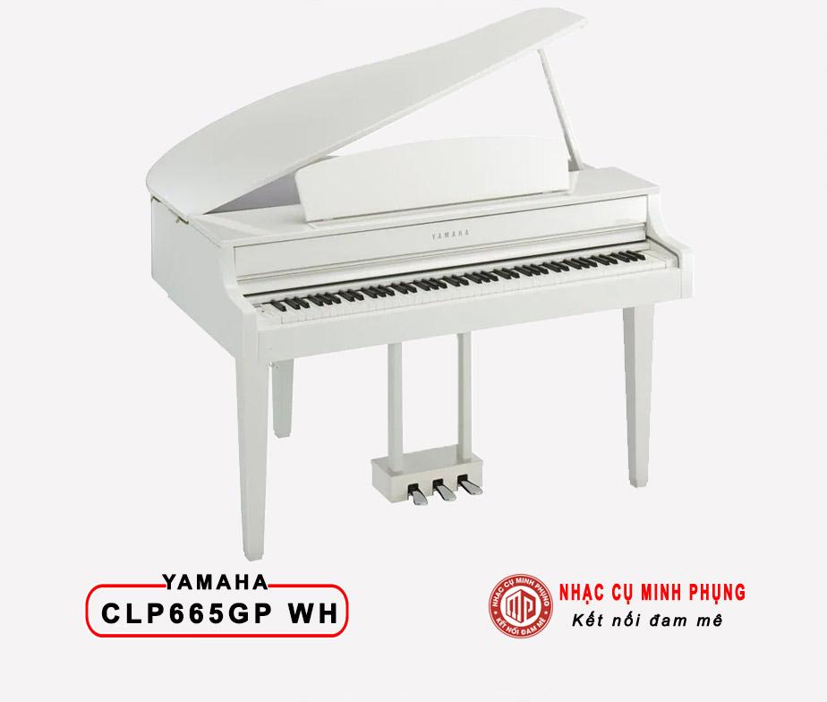 Đàn Piano Điện Yamaha CLP 665 GP WH