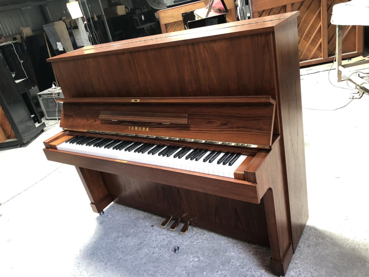 dan_piano_cơ_cu
