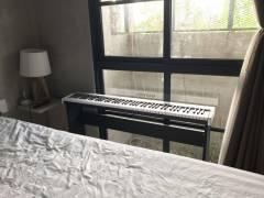 NHÀ PHÂN PHỐI ĐÀN PIANO MAXWELL