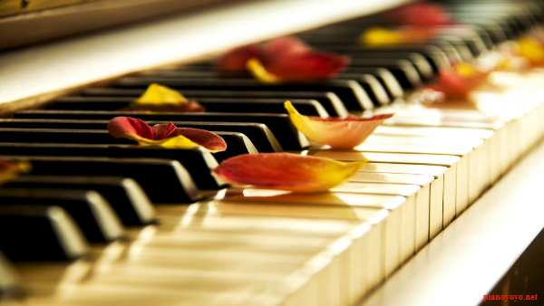 dan piano điện Yamaha