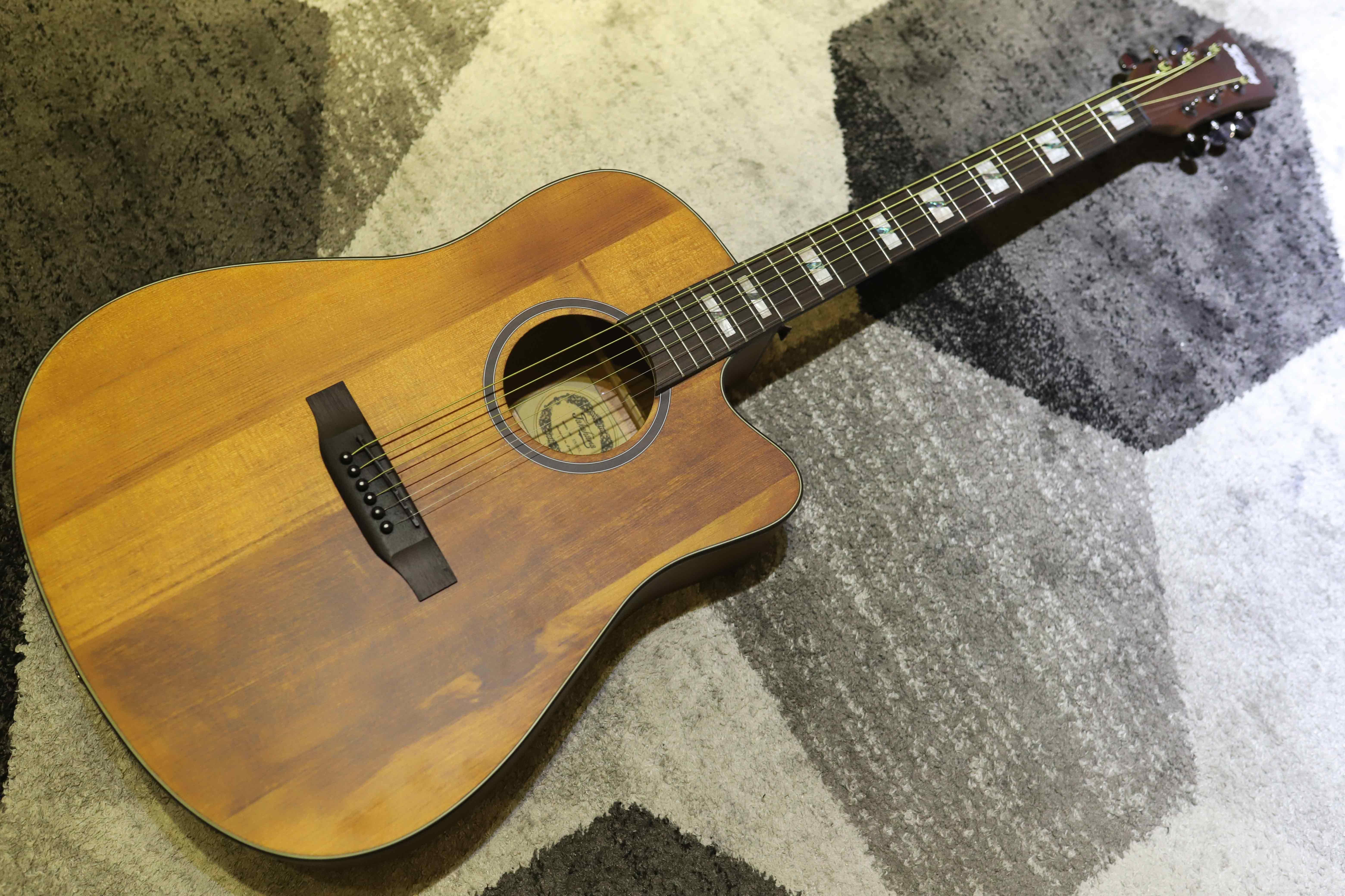 Đàn Guitar Acoustic Takahama ATK100CE-YN