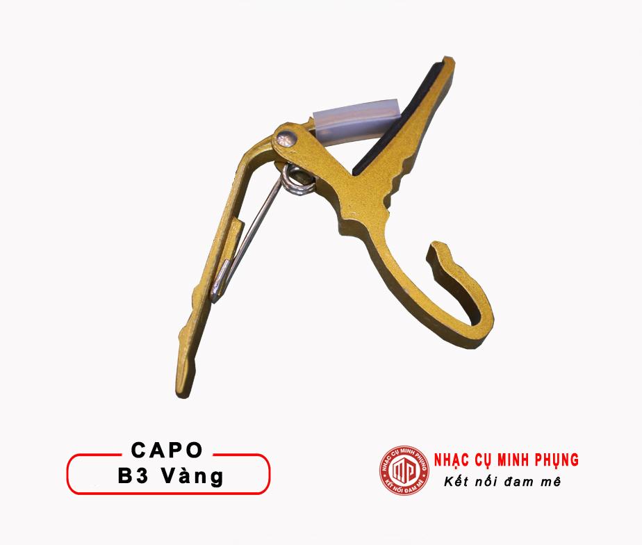 CAPO GUITAR B3
