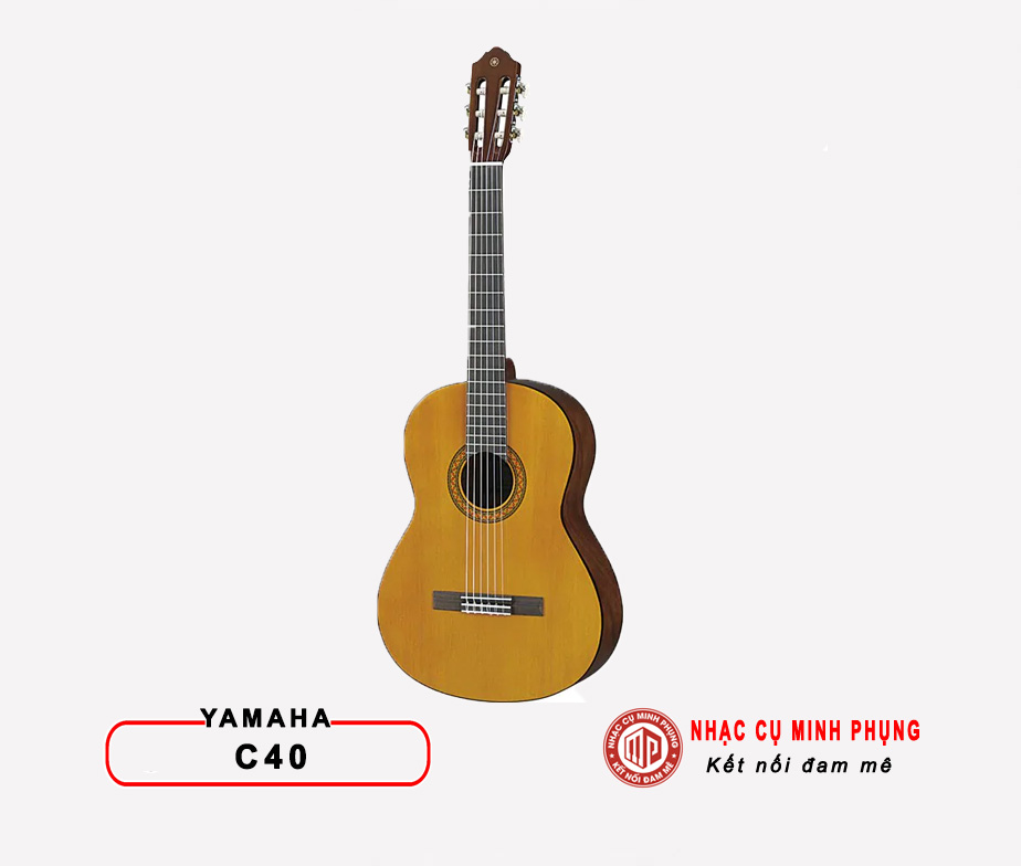 Đàn guitar acoustic Hex F450CE