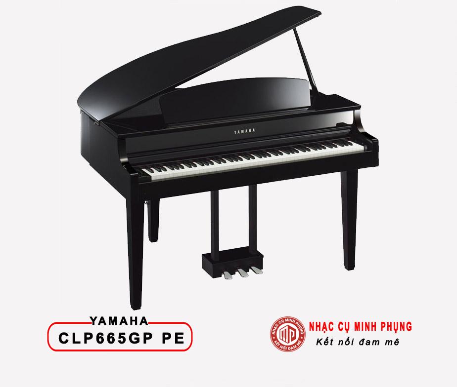 Đàn Piano Điện Yamaha CLP 665GP