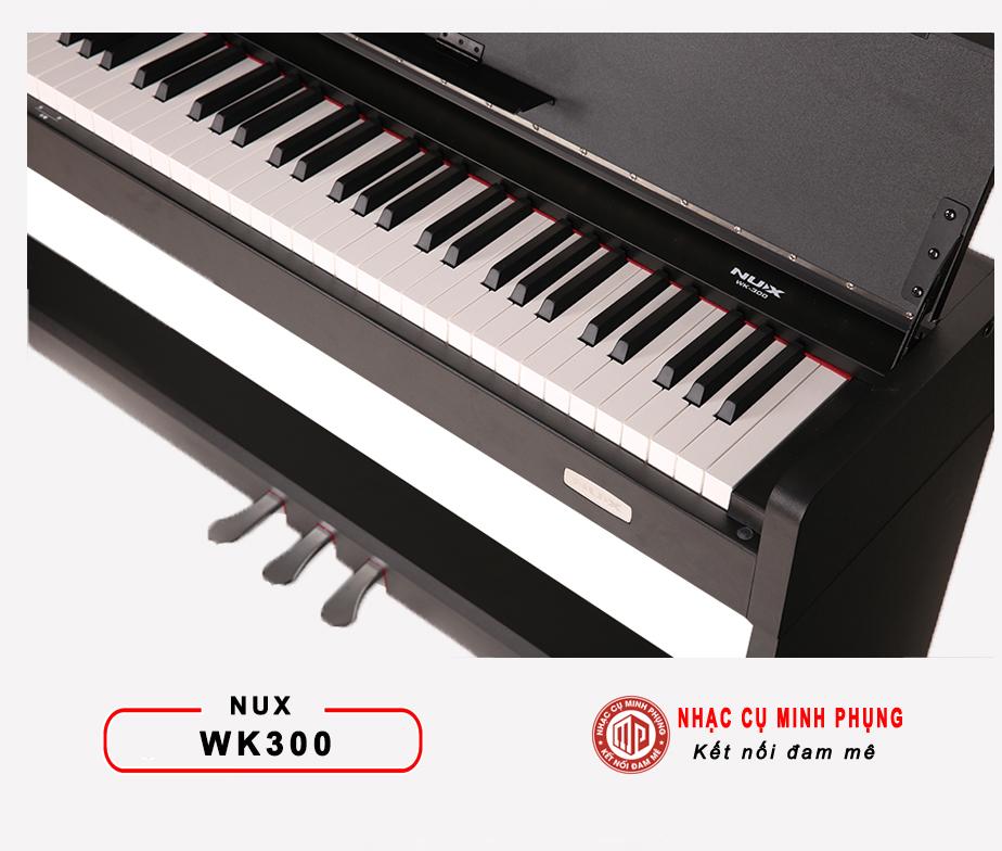 Dan Piano Dien Nux