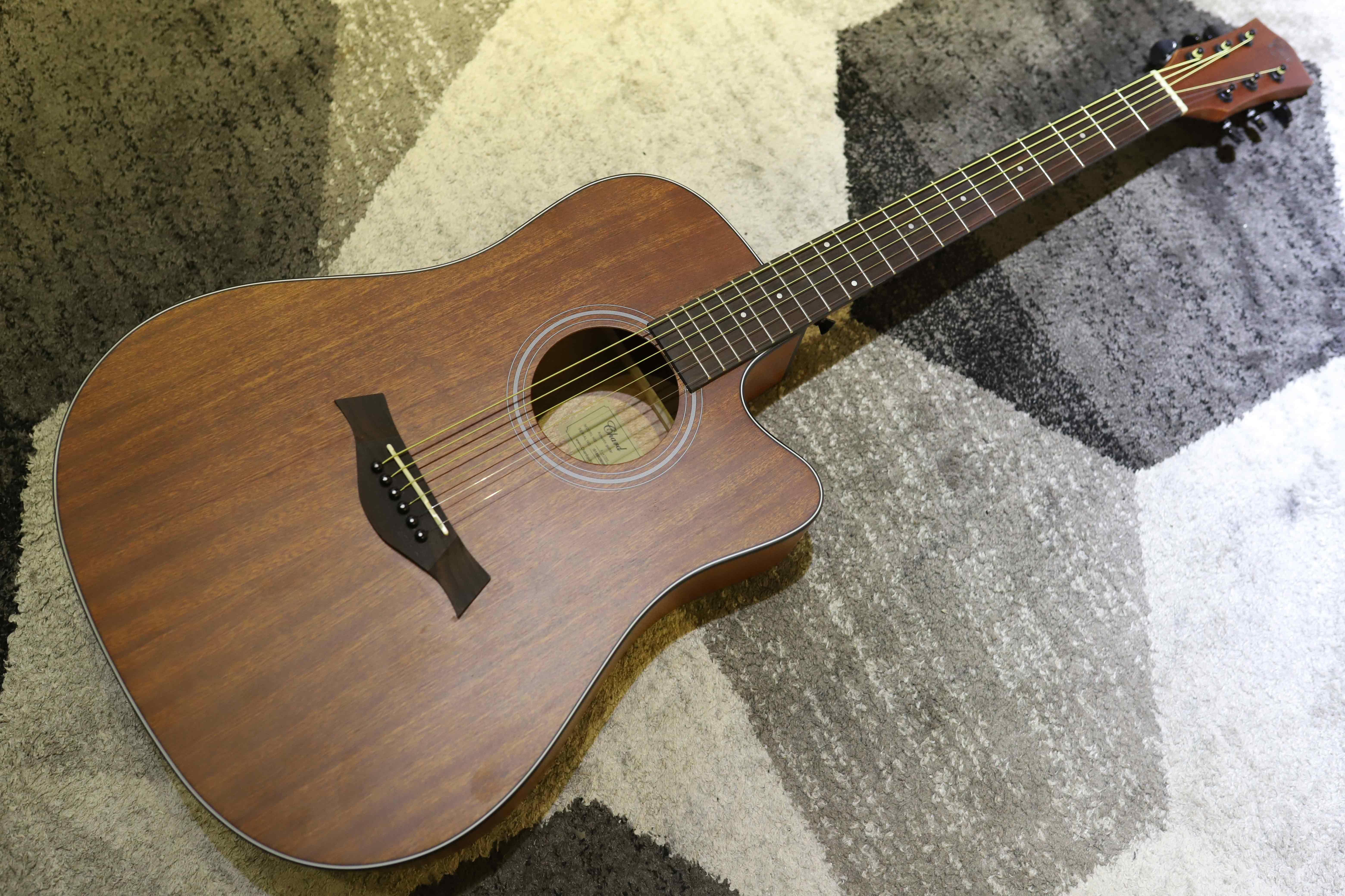 Đàn Guitar Acoustic Chard F4130C