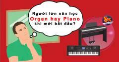 Giải Đáp Băn Khoăn Người Lớn Nên Học Piano Hay Organ Trước