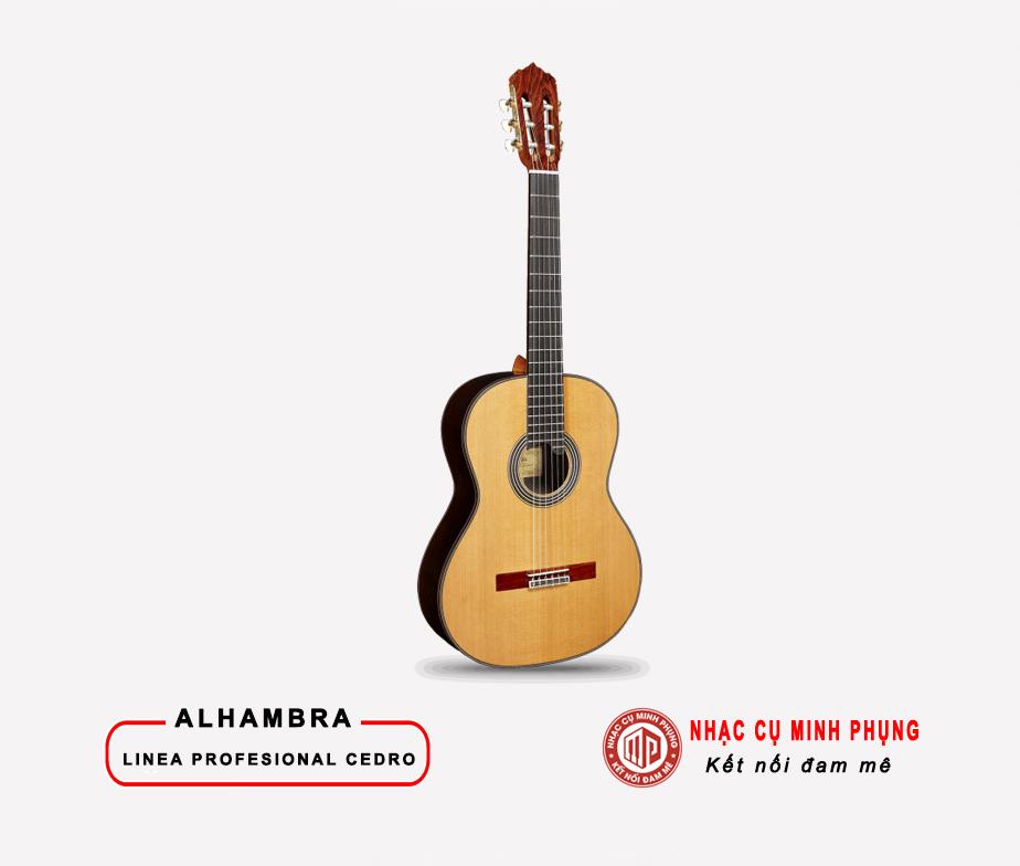 dan_guitar_alhambra_linea_profesional_cedro