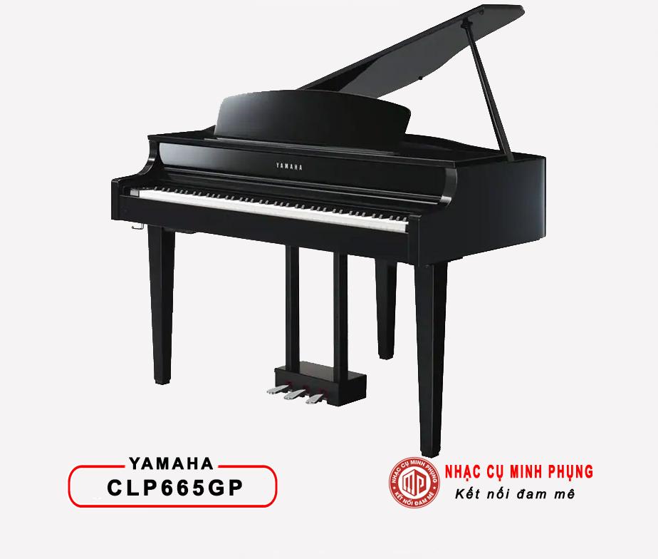 piano_dien_clp665gp