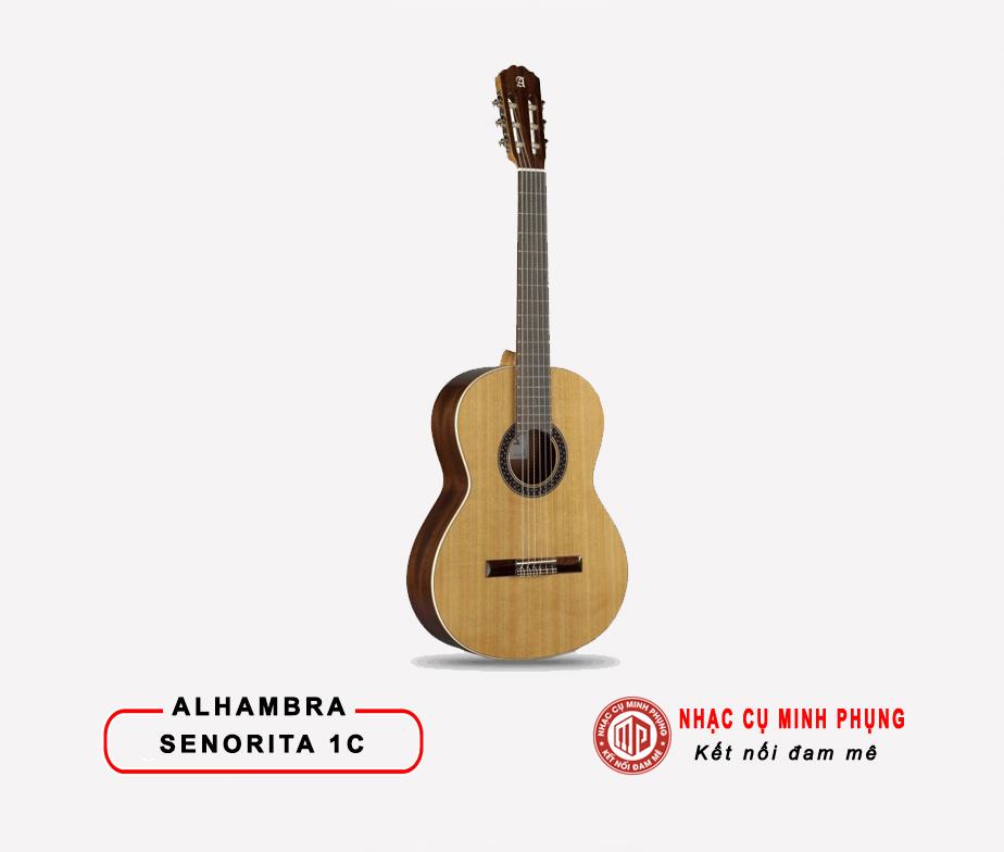 dan_guitar_classic_senorita_1c