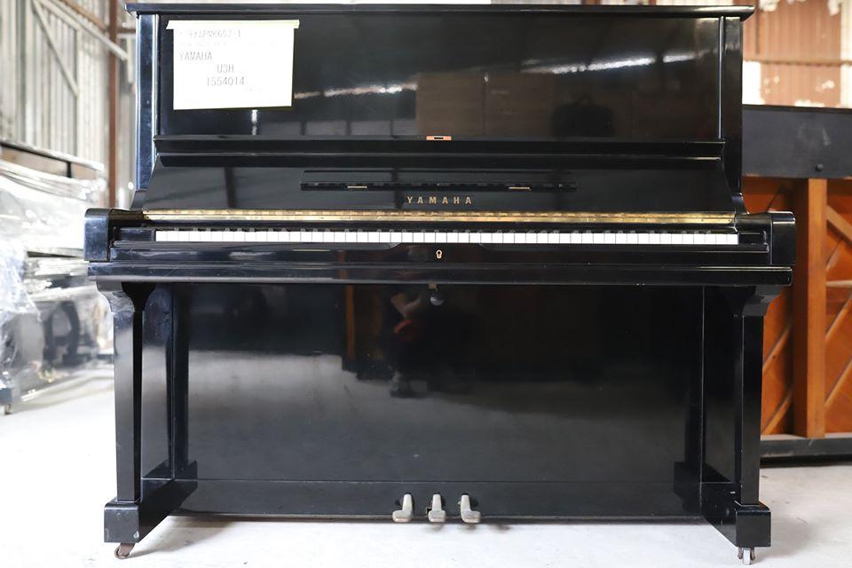 dan_piano_co_U3H
